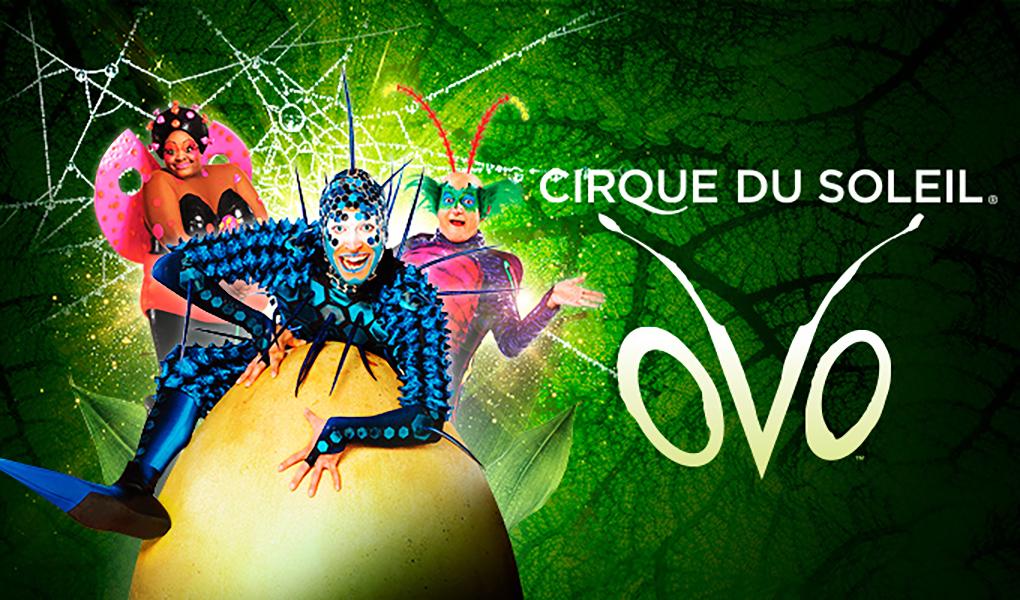 Cirque-1020x600